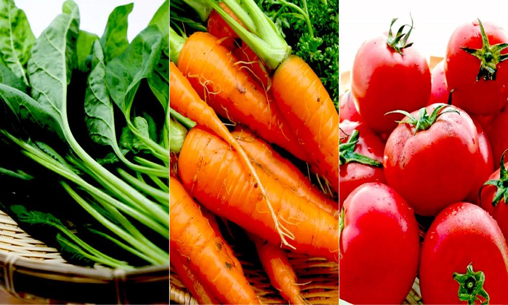 緑黄色野菜の豊富な栄養を自然のままに
