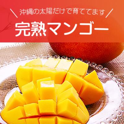 沖縄の太陽だけで育ててます 完熟マンゴー