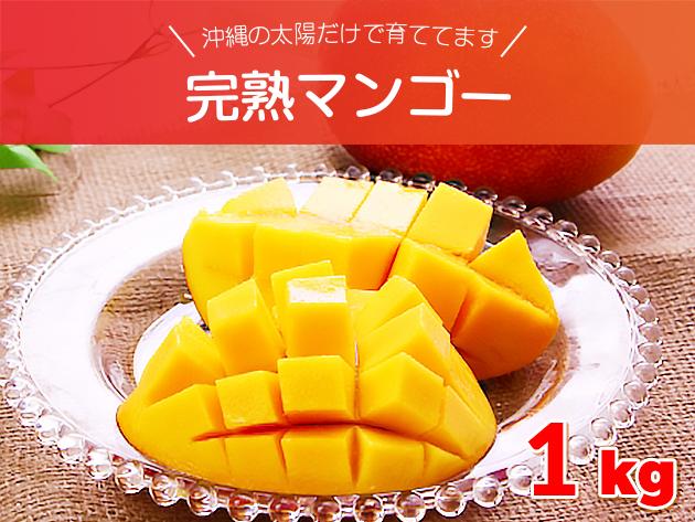 沖縄の太陽だけで育ててます 完熟マンゴー 約1キロセット (2~4玉入り) 沖縄県産