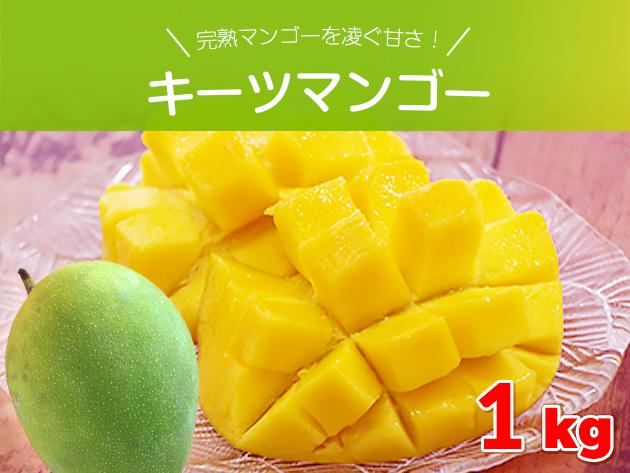 完熟マンゴーを凌ぐ甘さ キーツマンゴー約1キロ(1~2玉) 沖縄県産