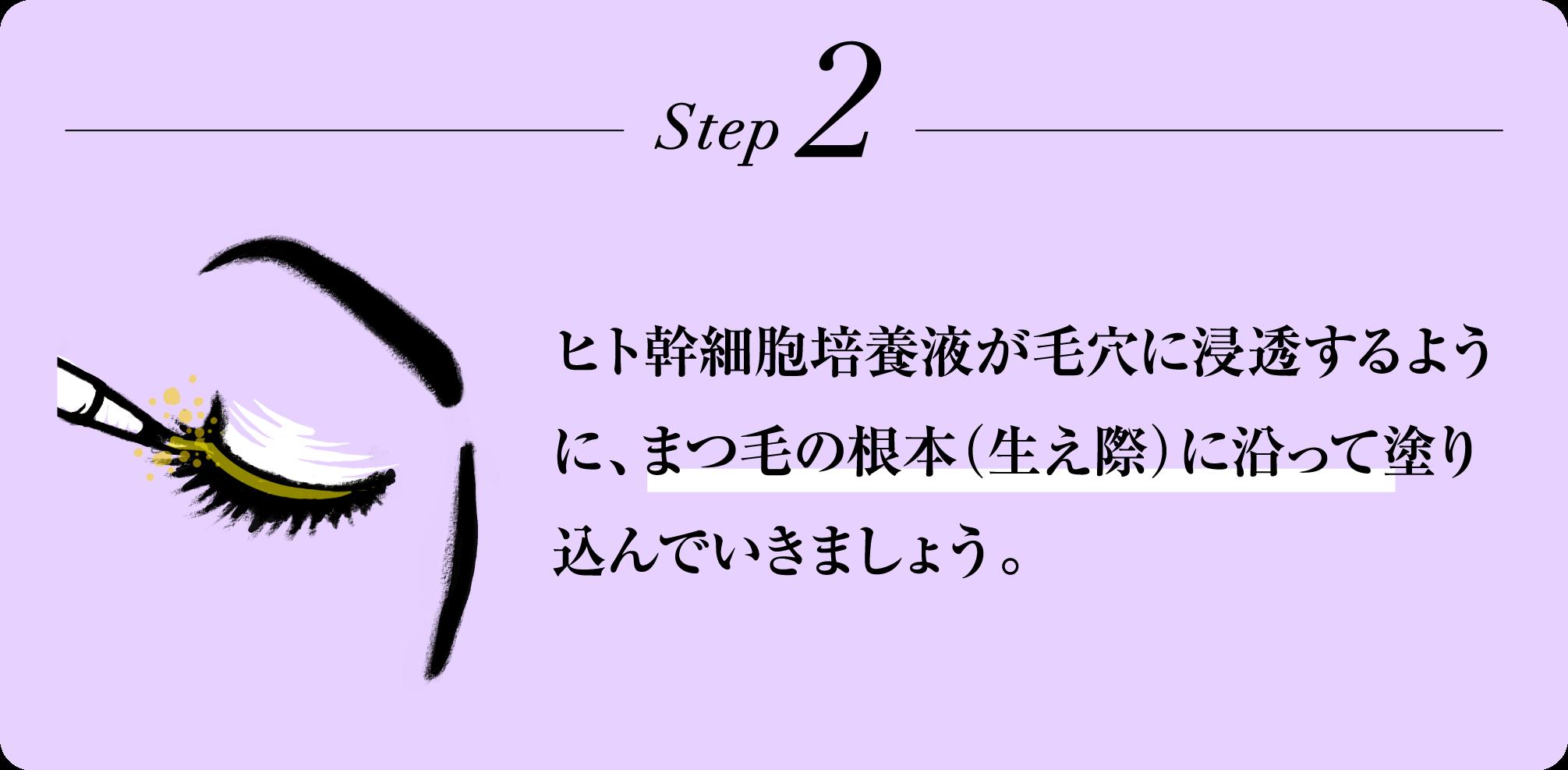 Step2 ヒト幹細胞培養液が毛穴に浸透するように、まつ毛の根本(生え際)に沿って塗り込んでいきましょう。
