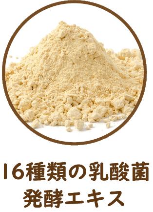16種類の乳酸菌発酵エキス