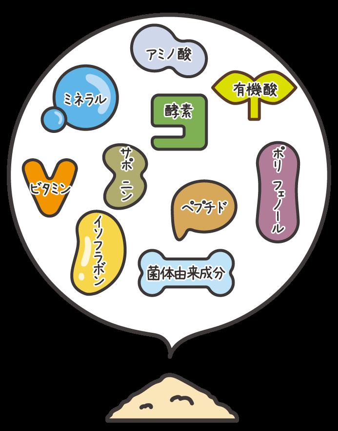 様々な菌のイメージイラスト