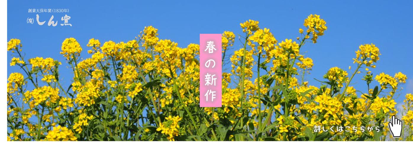 春の新作 しん窯 有田焼